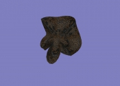 Мертвый узел (артефакт АМК2)