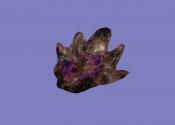 Рука (артефакт АМК2)