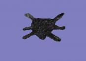 Паук (артефакт АМК2)