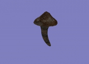 Волчок (артефакт АМК2)